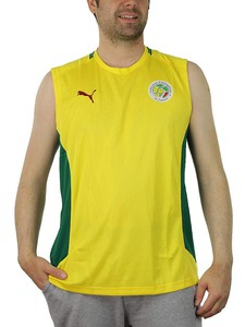 Puma Africa Tee Sleevless Training Jersey Senegal Herren Shirt 739533 21