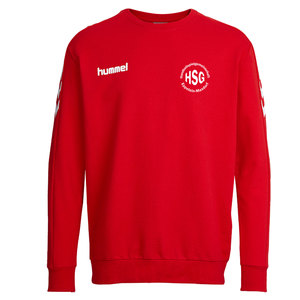 HSG Eppstein/Maxdorf Cotton Sweat Erwachsene